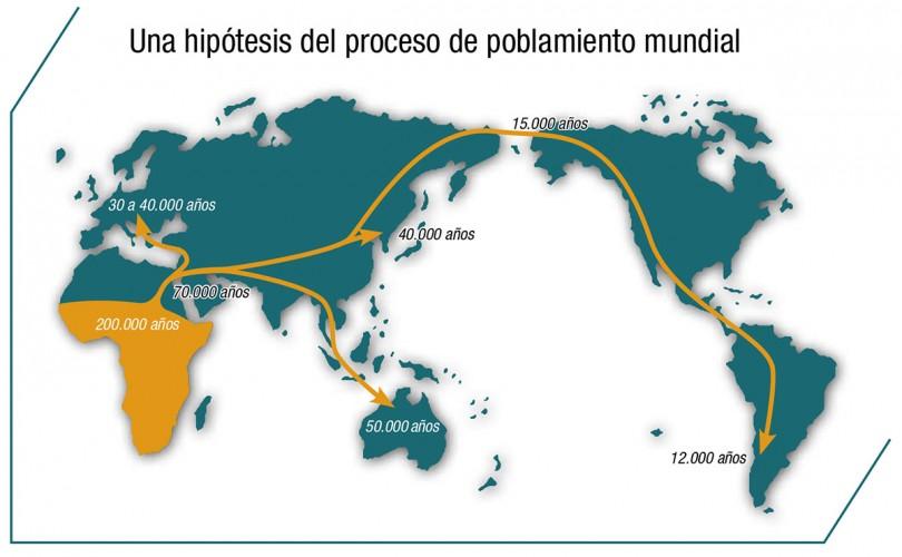 hominizacio Grafico