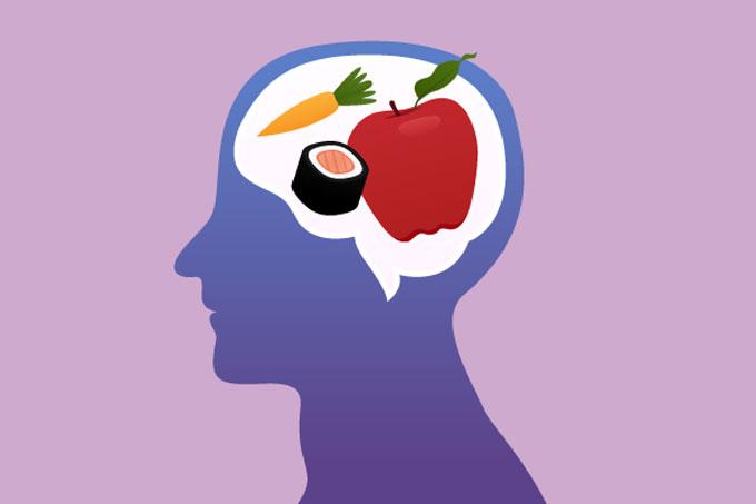 Alimentación Nutrición Y Cerebro Todo Ciencia
