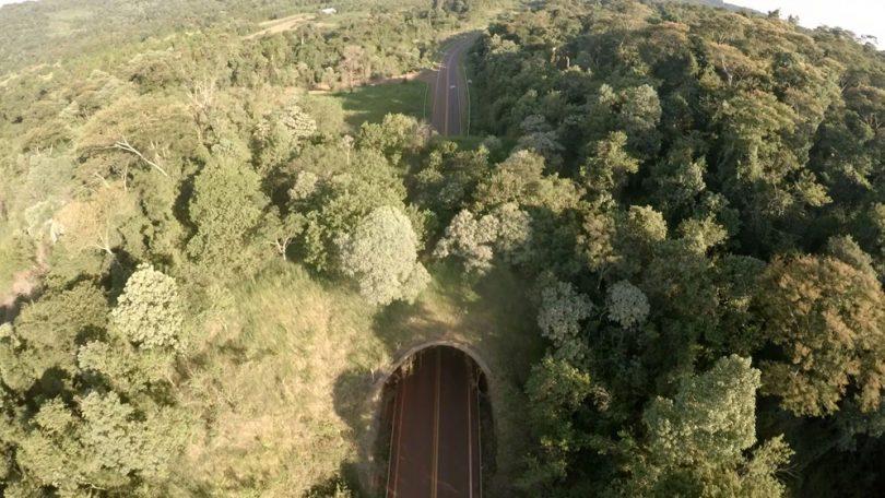 Ecoducto-en-Foerster-Urugua-í